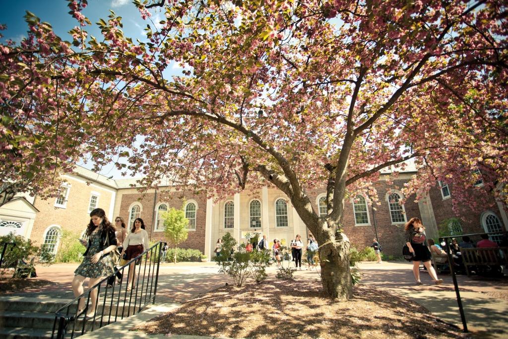 Drew University 3