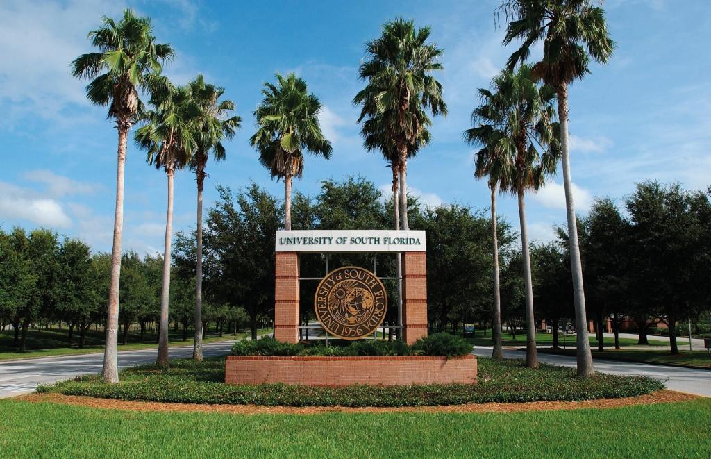 University of South Florida 4