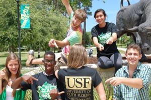 university-of-south-florida-teaching-internship-with-a-virtual-twist